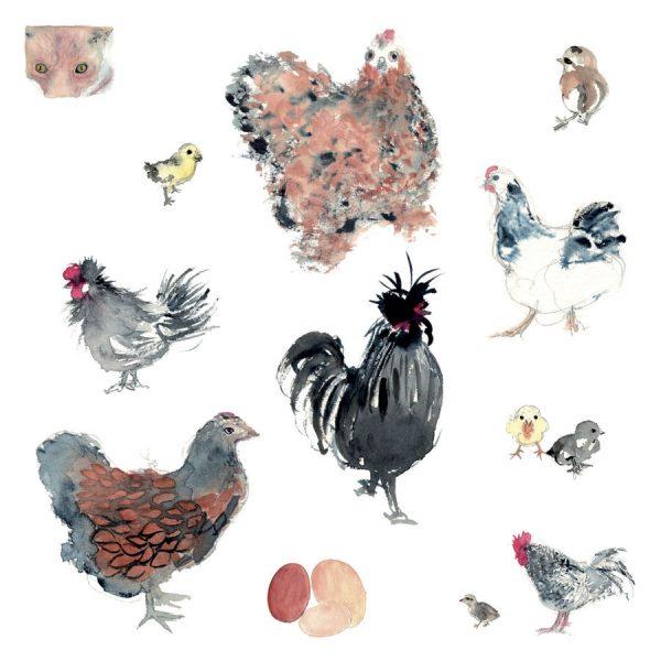 Les gallinacées et l'intrus carte carrée