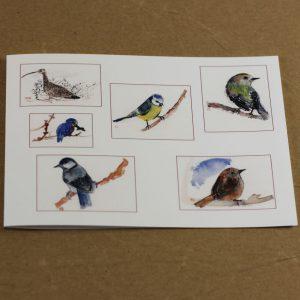 Quelques oiseaux carte double
